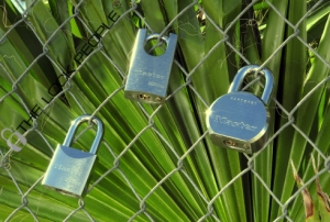 Master Lock ProSeries® Solid Steel Padlocks