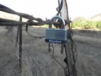 Master Lock No. 510D Laminated Steel